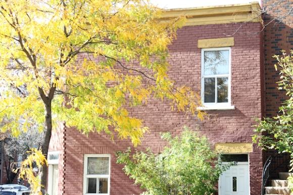 leaves and bricks